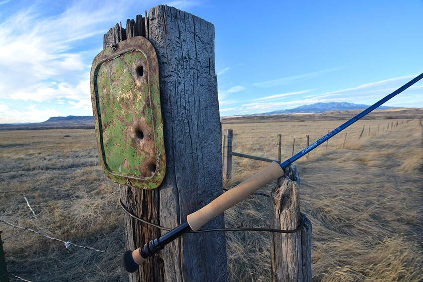 Sage Motive fly rod review