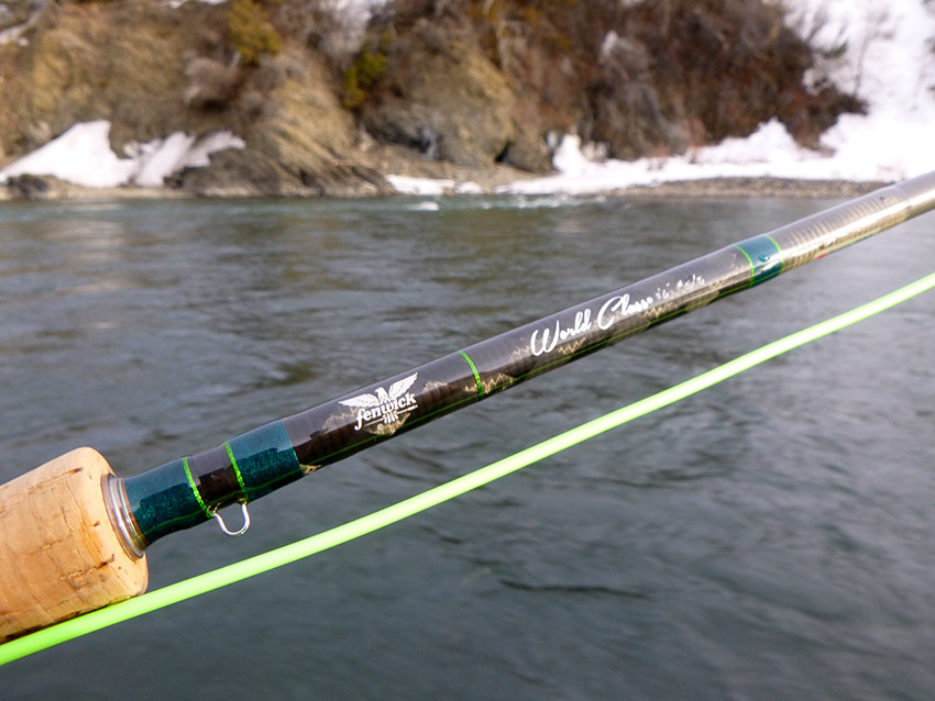 Fenwick Worldclass switch rod